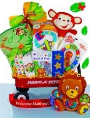 Baby Einstein Safari Themed Gift Basket