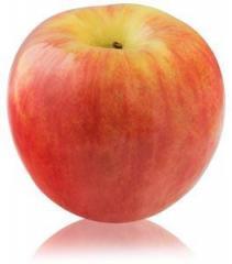 Autumn Glory® Apples