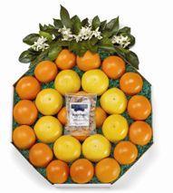 Florida Citrus Wreath