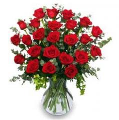 24 Radiant Roses