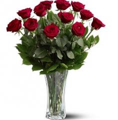 Dozen Premium Red Roses