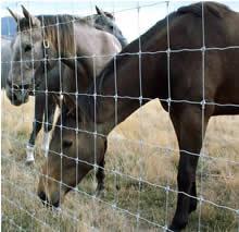 Stay-Tuff fence