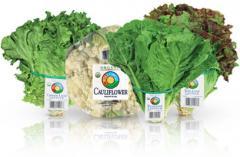 Full Circle™ Garden Fresh Produce