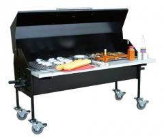 Grills to Go® Patio Grill Charcoal Fired