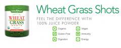 Wheat Grass Shots 5.3oz