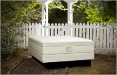Arbor Collection mattresses