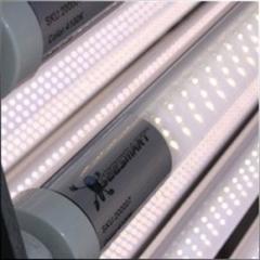 RedBird LED Fluorescent Tube Light T12 to T8