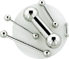 Stainless Steel Straight Barbell