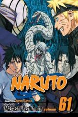 Naruto, Vol. 61 (Paperback)