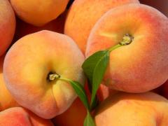 Jack Brown Peaches