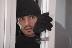 Burglar Alarm and Stable Backup Systems