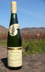 Alsace 2005 France