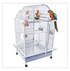 Opening Victorian Top Cage
