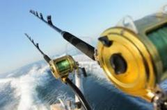 Fishing reels and rod