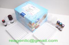 Reagen rapid Erythromycin ELISA Test Kit (96T)