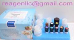 Beta-Lactam(milk)ELISA Test Kit
