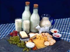Processed milk product