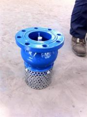 Ductile iron foot valve