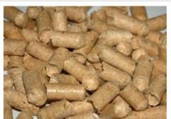 Wood pellets (pellets) made of coniferous tree