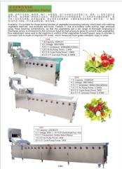 Cucumber dicing machine potato peeling slicing