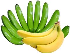 Fresh Banana, Bonanza, Cavendish