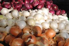 Bulb onion dry, Onion white, Onions leek