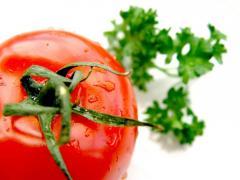 Tomatoes, Roma Tomatoes, yellow cherry branch,