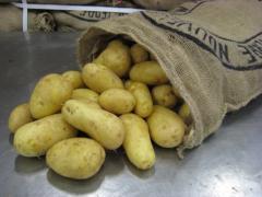 Potatoes, Fresh White Potatoes, Fresh carrots