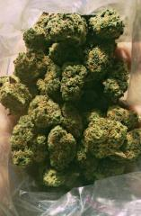 Available high quality and clean buds of kush both in large and medium quantities,pain killers,relief,anxiety,weight loss pills,fat burner, hydrogel and PMMA butt injections.
