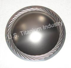 Titanium Voice Diaphragm