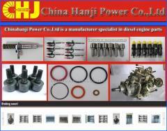 Repair Kit VE pump parts 800640