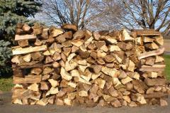 Timber Logs ,Tali, Okan, Dabema, Bilinga, Frake,