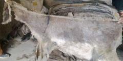 Veal skin