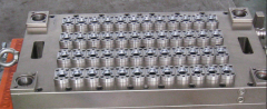 Chinese PET Preform molds  Jar PET packing dies tools