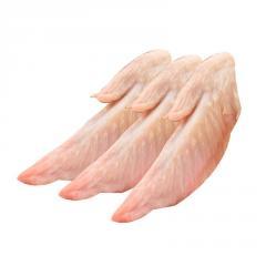 Halal Chicken Feet / Frozen Chicken Paws Brazil / Fresh chicken wings and foot