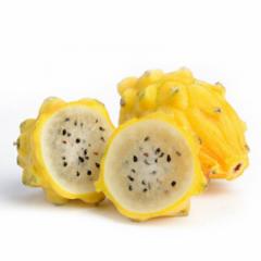 Dragon Fruit (Yellow)- Hilosereus Undatus