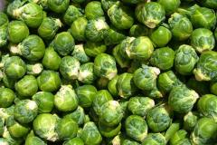 Fresh Brussels cabbage
