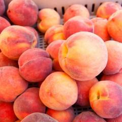 Fresh Peaches / Fresh Nectarines