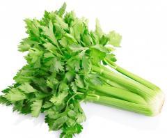 Celery seeds celery seed extract freeze dried
