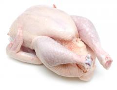Brazilian Halal Frozen Whole Chicken, Chicken Parts