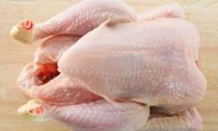 Halal Frozen Chicken Quarter Legs / Whole / Breast / Drum Sticks For Sale