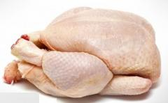 Frozen Halal Whole Chicken with EU Standard