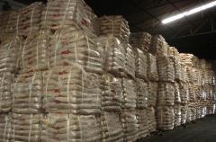 Quality Wheat Flour.