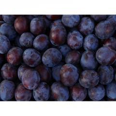 Plums & Prunes