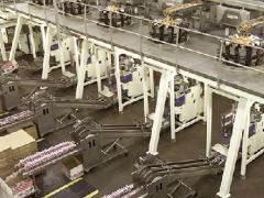 Packaging Equipment Double Lane Collator