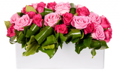 Roses Girlfriend