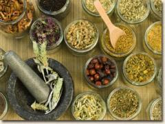 Botanicals, Teas, Coffees and Phytonutrients