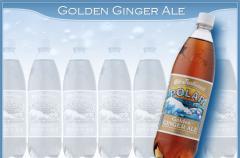 Golden Ginger Ale