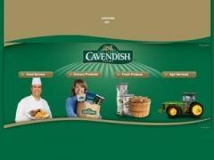 Cavendish Farms Frozen Potato Products