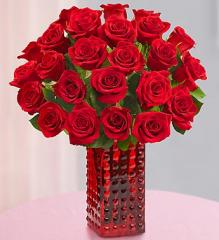 Red Roses, Two Dozen + Free Red Vase